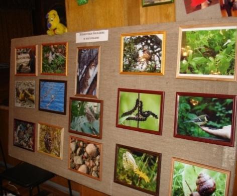 эколого-биологический отдел